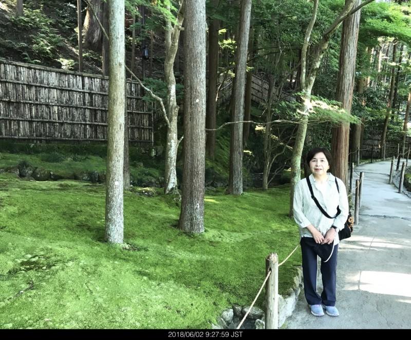 f:id:yuken1220:20180602092759j:image