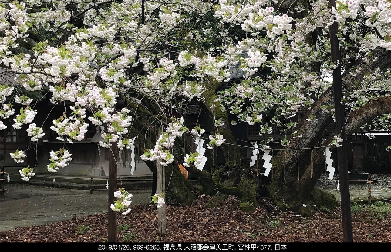 f:id:yuken1220:20190427052824j:image