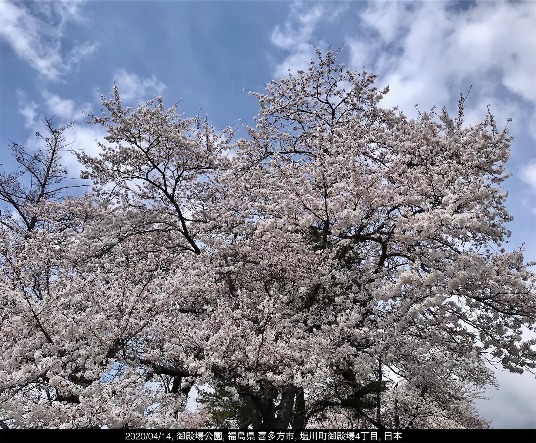 f:id:yuken1220:20200415043624j:image
