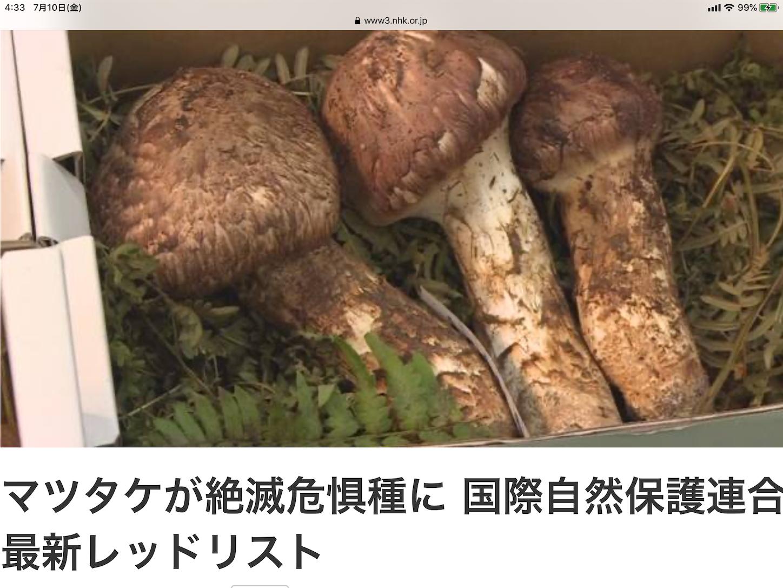 f:id:yuken1220:20200710045644p:image