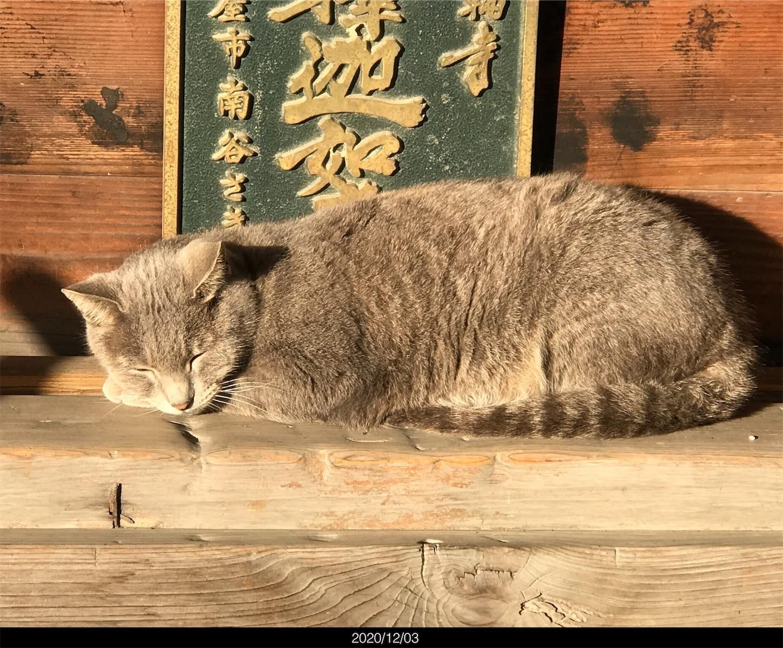 f:id:yuken1220:20201205025201j:image
