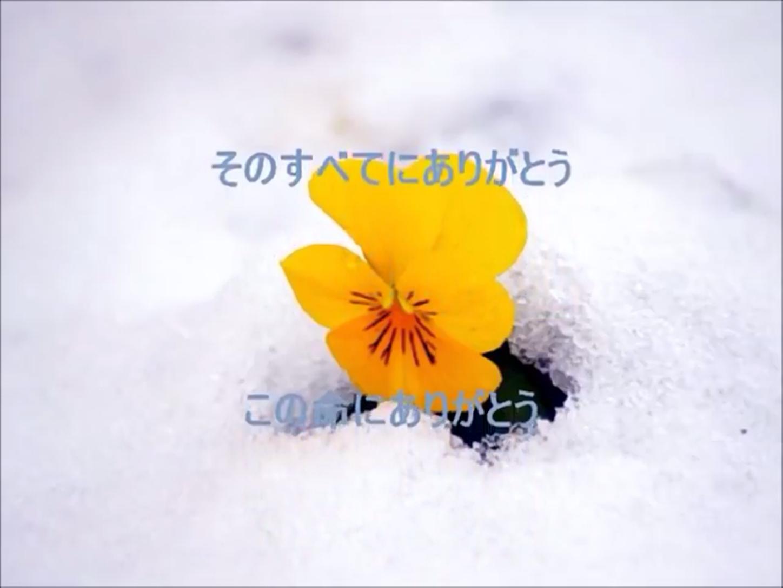 f:id:yuken1220:20210628034606p:image