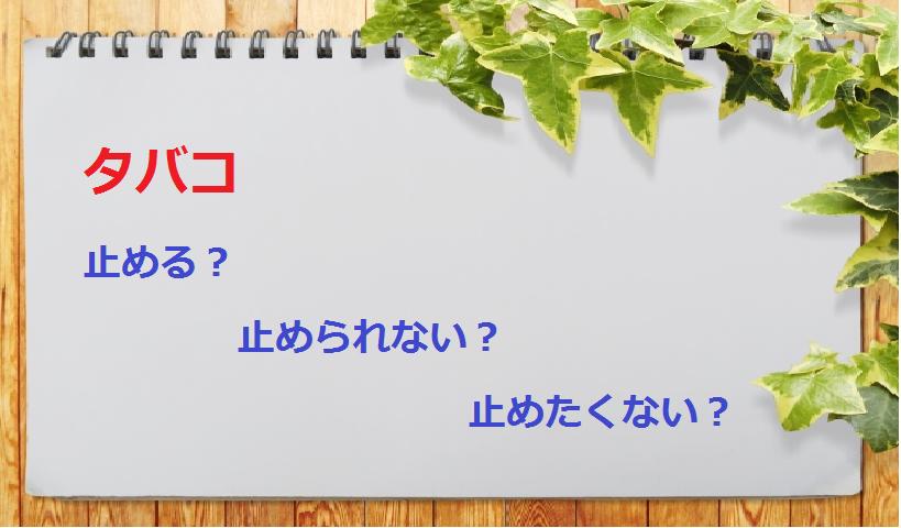f:id:yuki-1224_love30:20170508142923p:plain