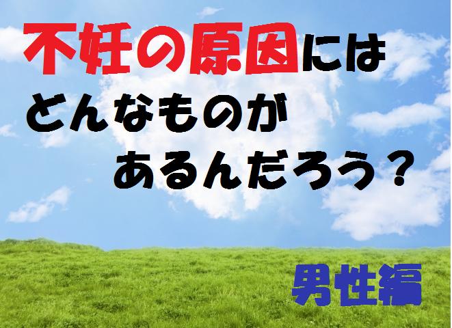 f:id:yuki-1224_love30:20170612232348p:plain