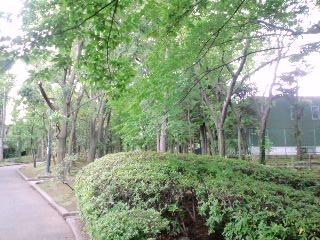 f:id:yuki-freestyle-sk8:20120610161444j:image