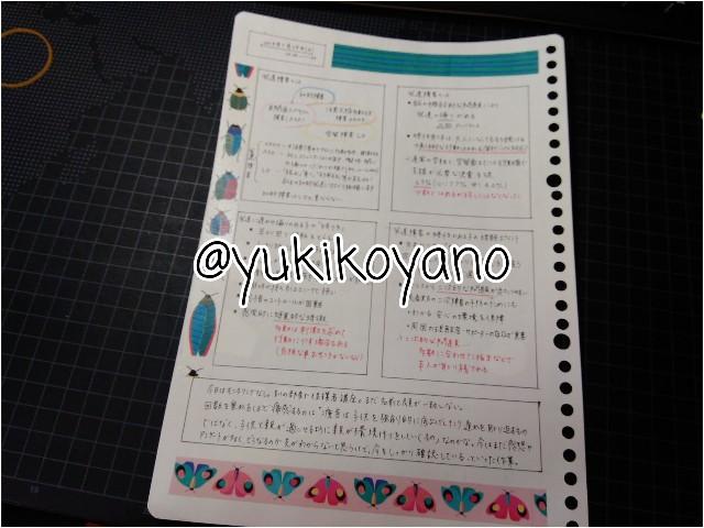 f:id:yuki-freestyle-sk8:20190727053225j:image