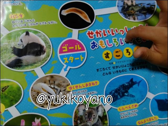 f:id:yuki-freestyle-sk8:20190727054601j:plain