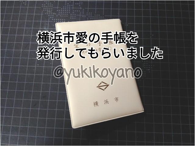 f:id:yuki-freestyle-sk8:20190822190118j:plain