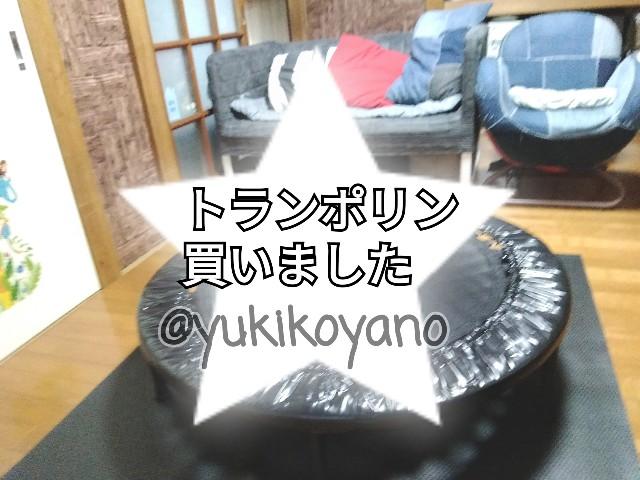 f:id:yuki-freestyle-sk8:20190929061543j:plain