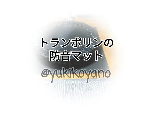 f:id:yuki-freestyle-sk8:20191118153224j:image