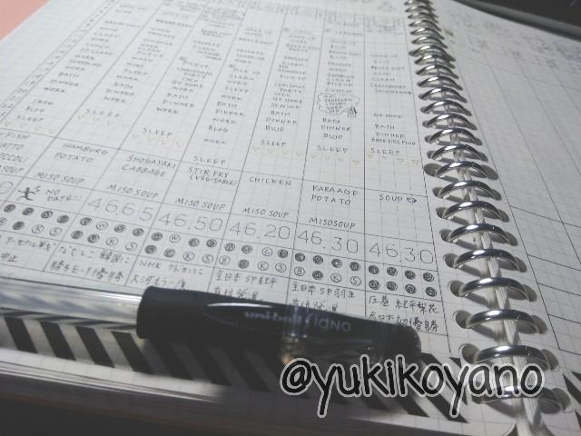 f:id:yuki-freestyle-sk8:20191222064422j:plain