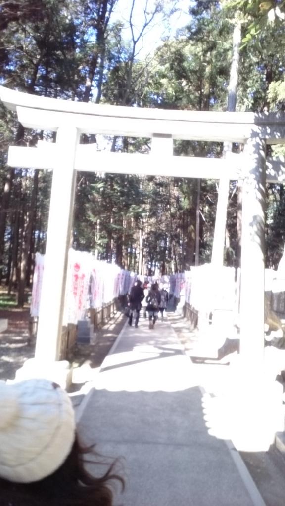 f:id:yuki-ka119:20170219195524j:plain