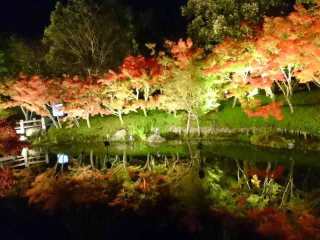 f:id:yuki-ka119:20181203203636j:image