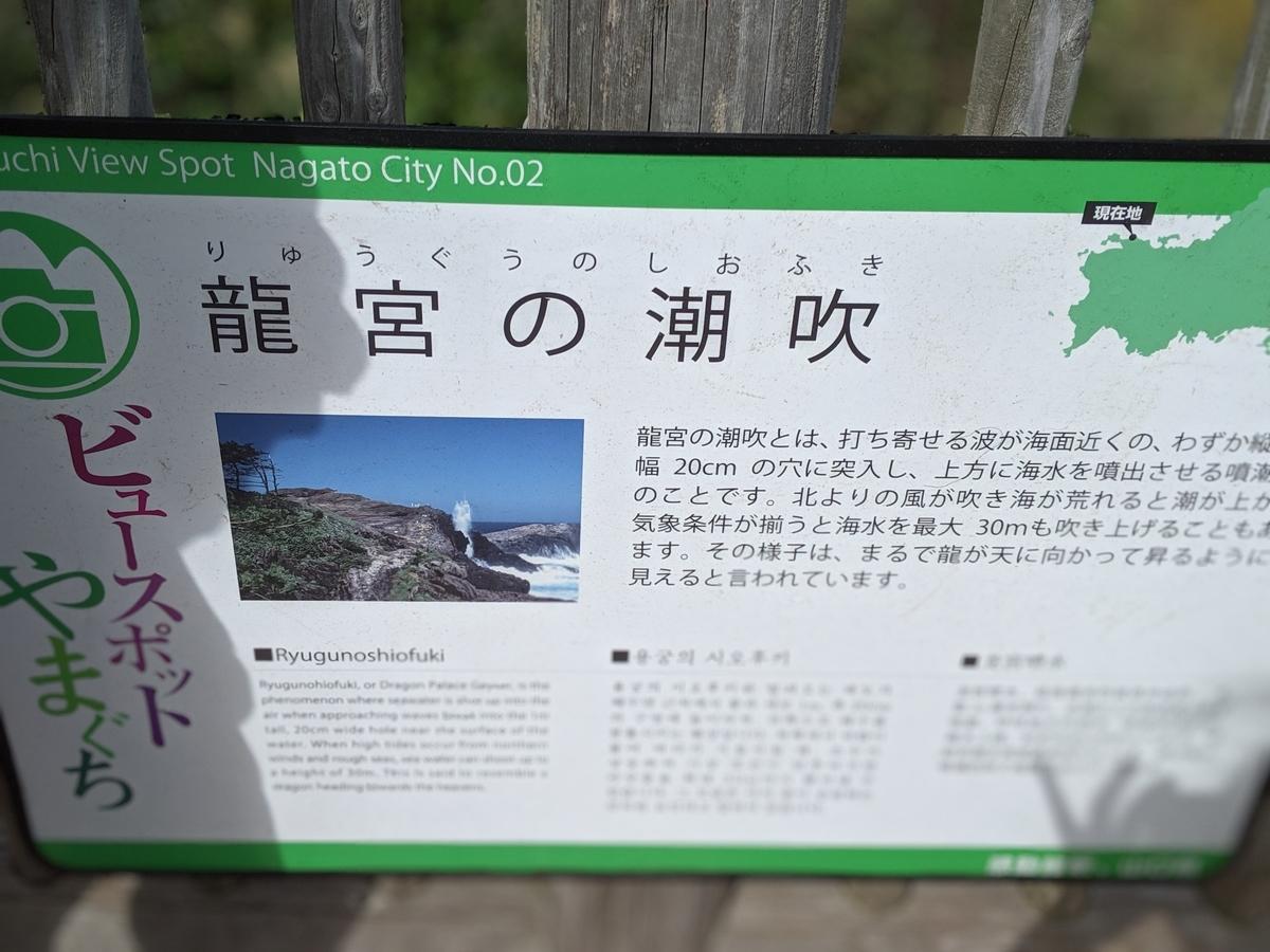 f:id:yuki-memory:20191101202355j:plain