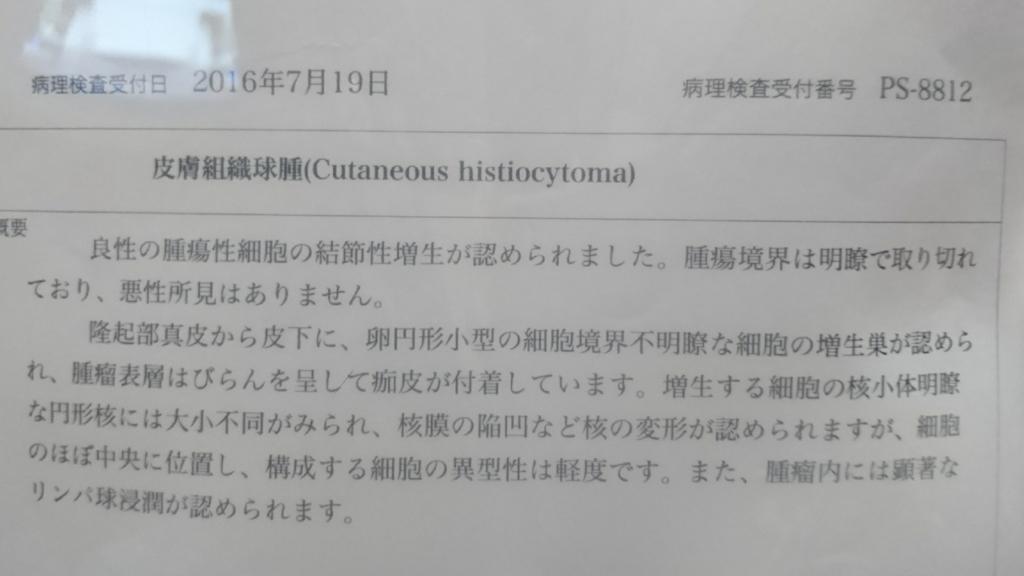 f:id:yuki-mo-ko:20160729201455j:plain