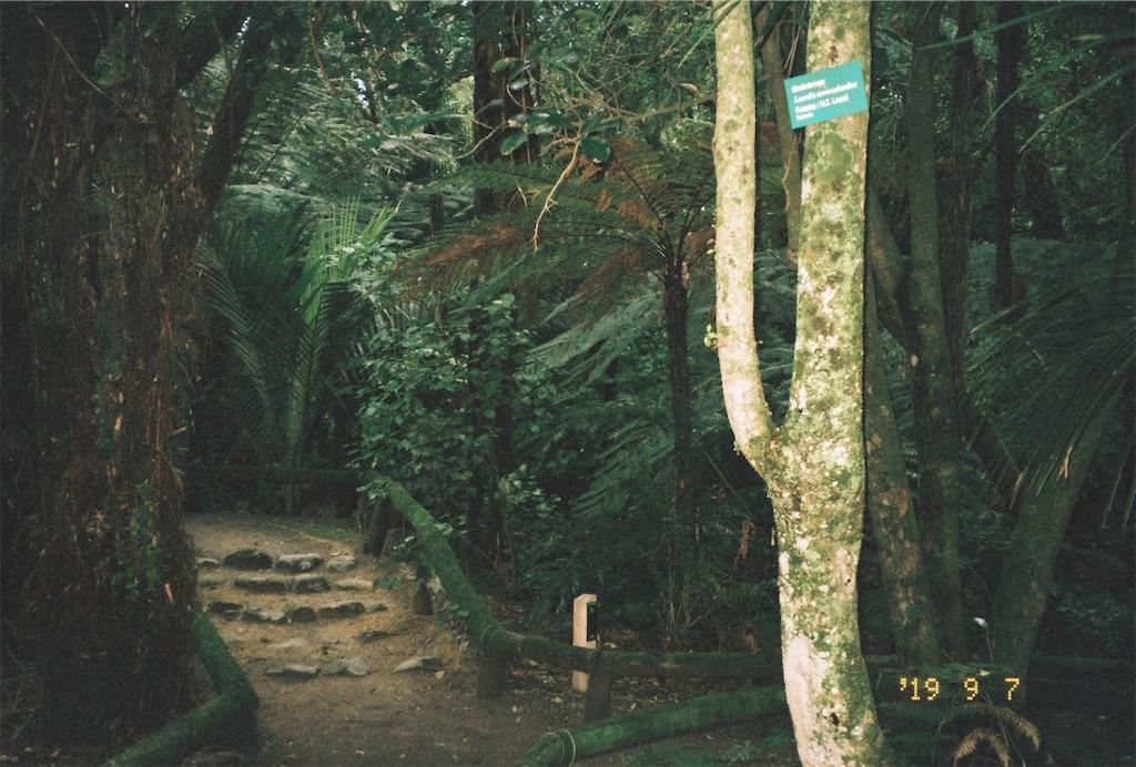 f:id:yuki-shudo-8:20191115024116j:image