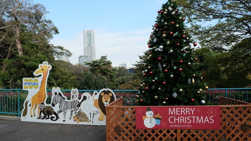 クリスマスツリーとランドマークタワー