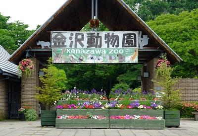 f:id:yuki-tantan:20190825014031j:plain