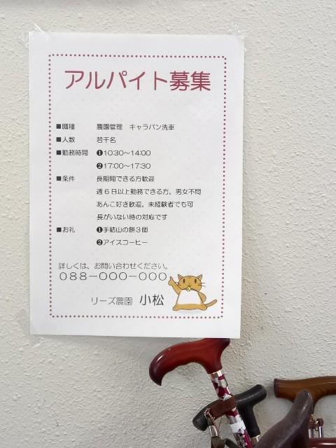 f:id:yuki-violine:20180815111302j:image