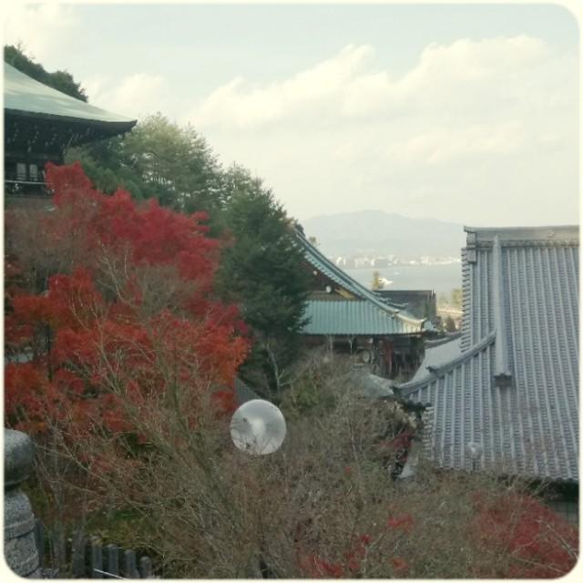 f:id:yuki-violine:20181125170542j:image