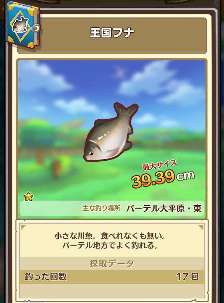 f:id:yuki00540422:20180812142022j:image