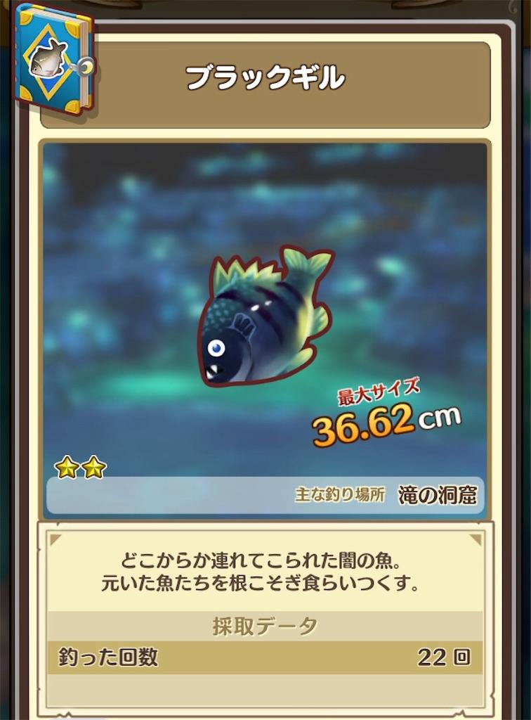 f:id:yuki00540422:20180812142146j:image