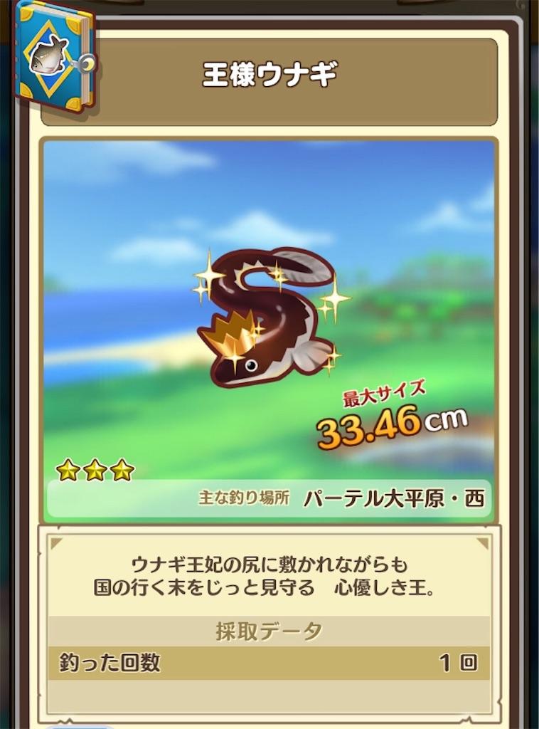 f:id:yuki00540422:20180812142307j:image