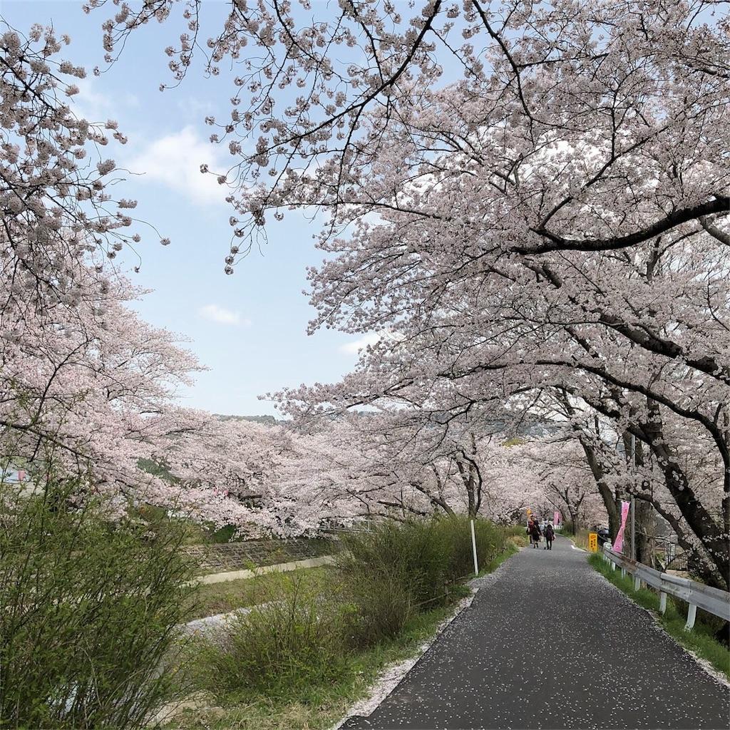 f:id:yuki0211taka:20180402001325j:image