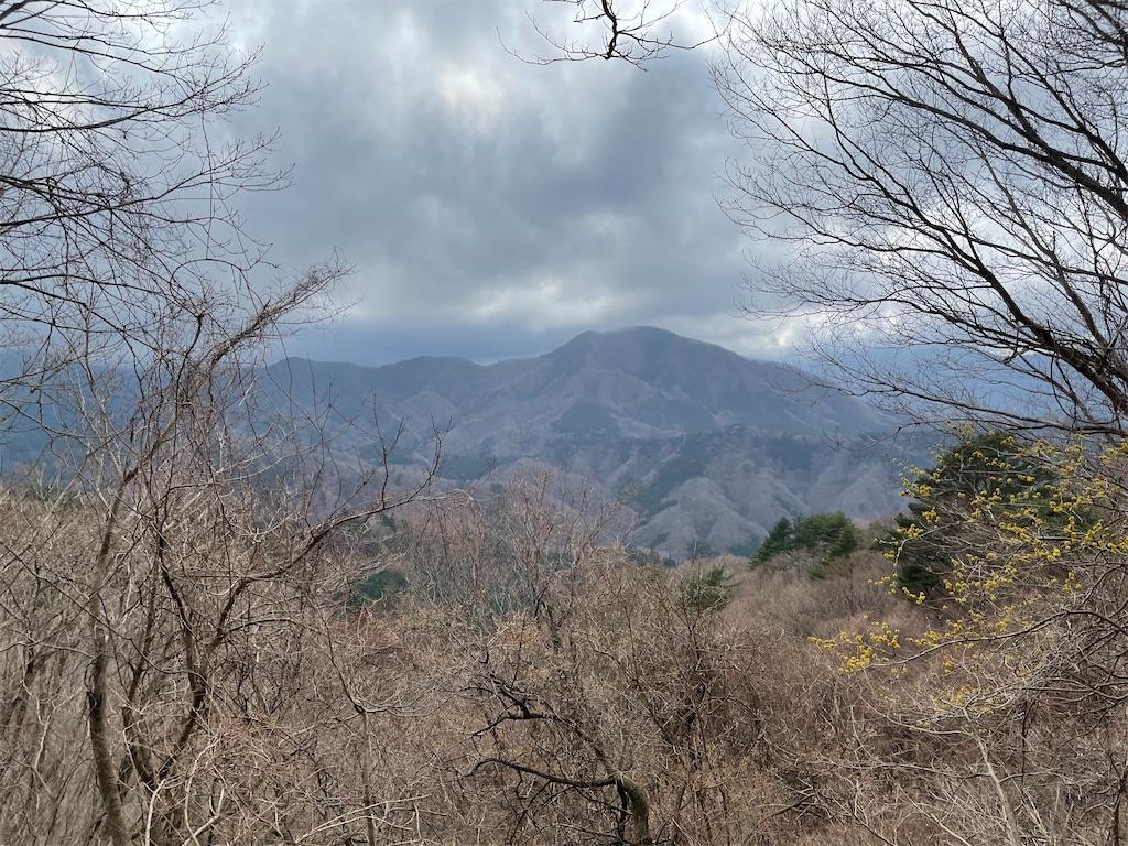 大室山の山道の途中からの景色