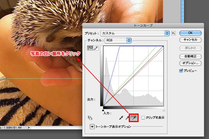 f:id:yuki53:20170508235153j:plain