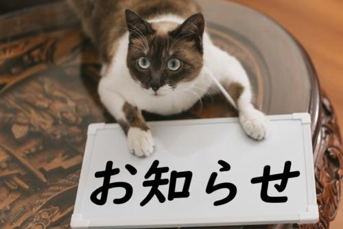 f:id:yuki6158:20190706161949p:plain