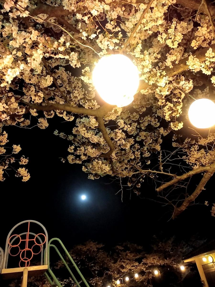 f:id:yuki67hayashi:20200407201512j:plain