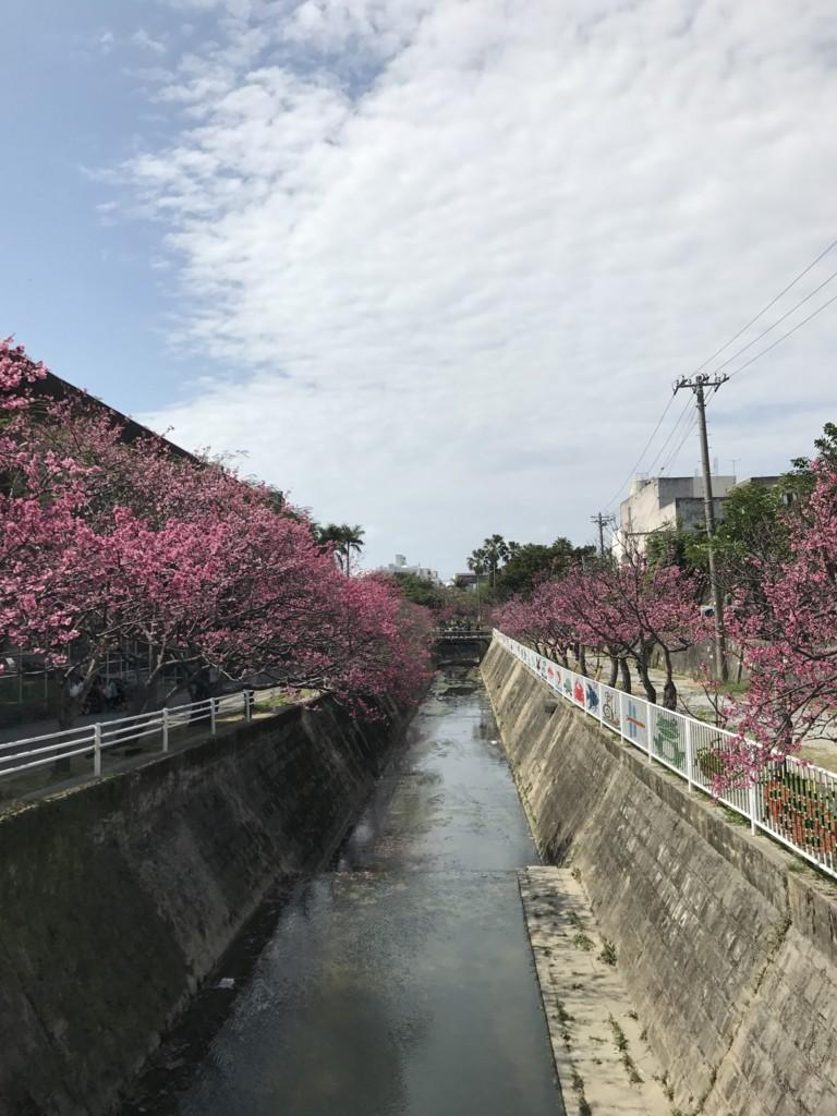 f:id:yuki_2021:20170305135019j:plain:w300