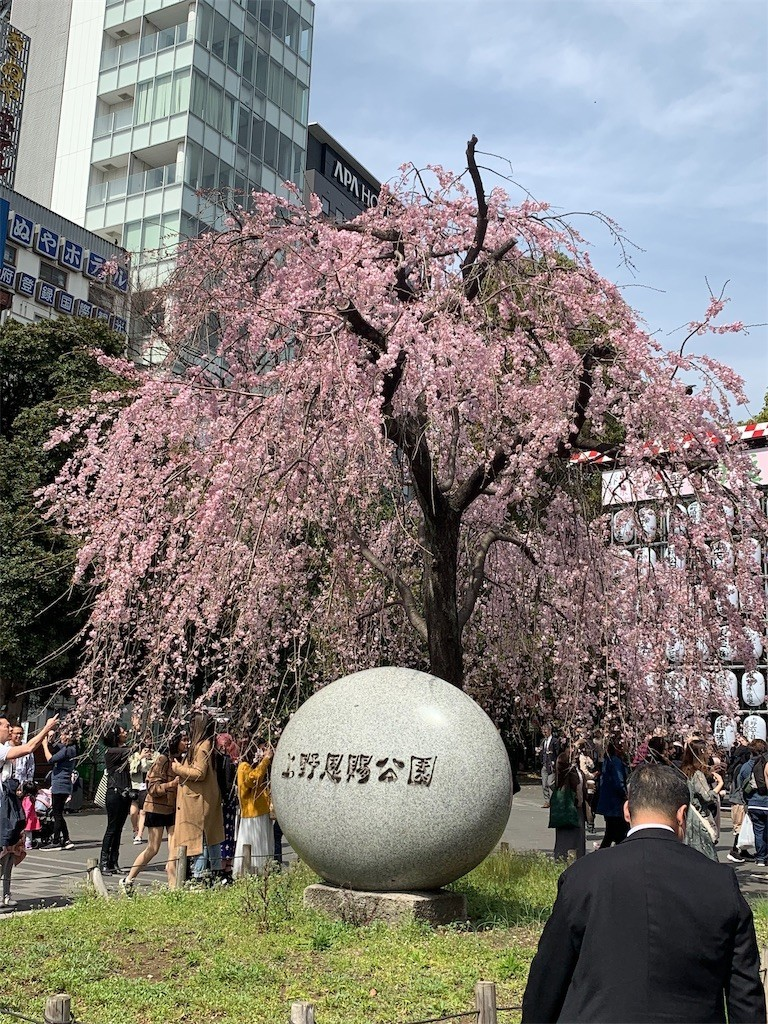 f:id:yuki_2021:20190322195623j:image
