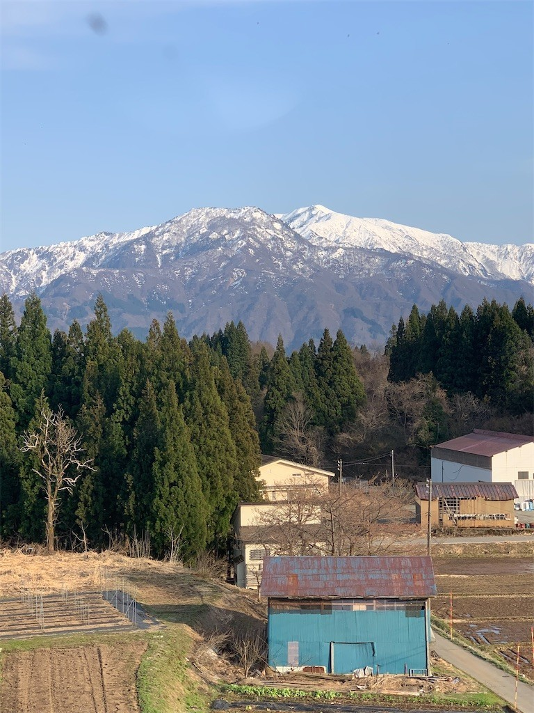f:id:yuki_2021:20200404211504j:image