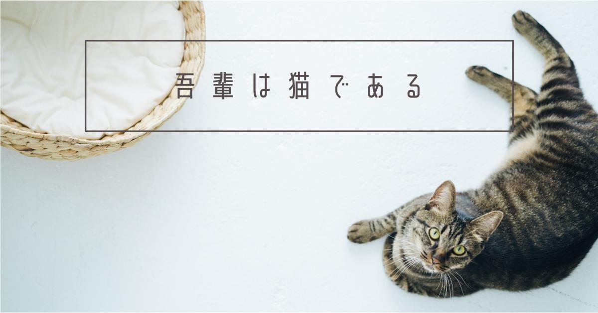 f:id:yuki_2021:20210218085143p:image