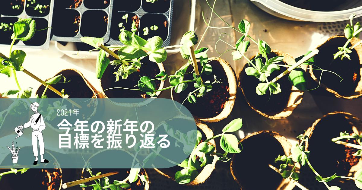 f:id:yuki_2021:20210301143802p:plain
