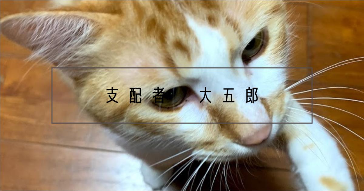 f:id:yuki_2021:20210309061847p:plain