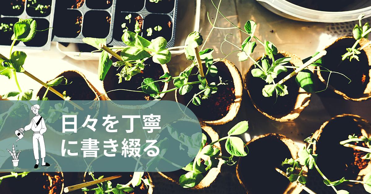 f:id:yuki_2021:20210331060828p:plain