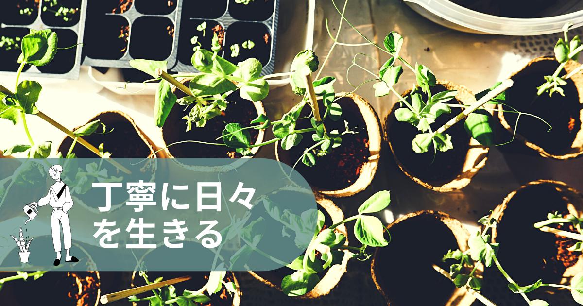 f:id:yuki_2021:20210617085518p:plain