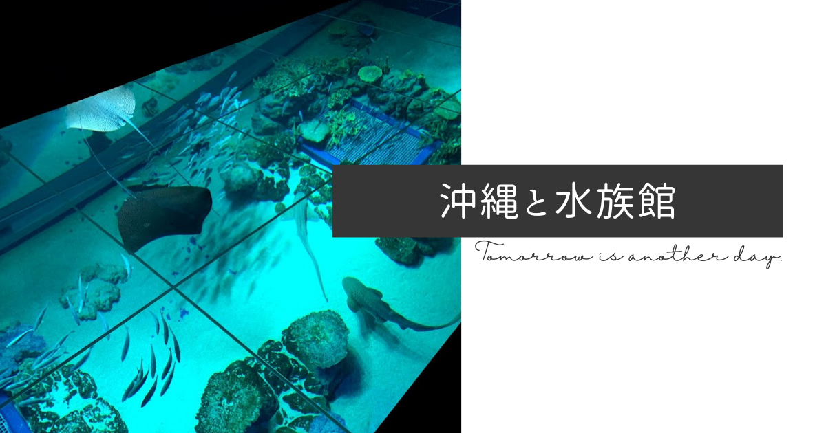 f:id:yuki_2021:20210725191835p:plain