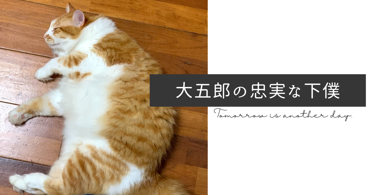 f:id:yuki_2021:20210906223255p:plain