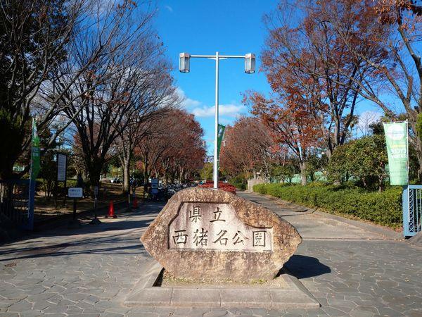 f:id:yuki_arcadia:20201215140126j:plain