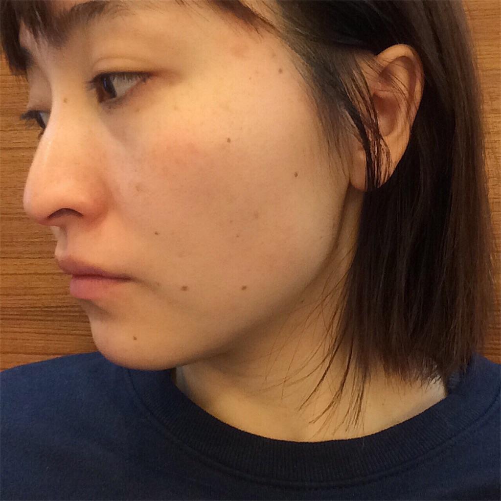 f:id:yuki_kuroha:20190127152840j:image