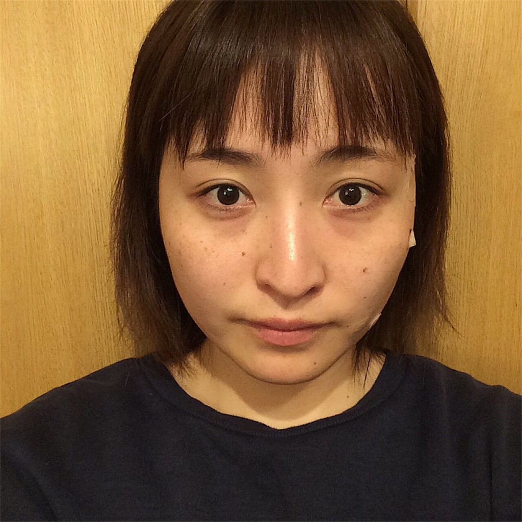 f:id:yuki_kuroha:20190129185923j:image