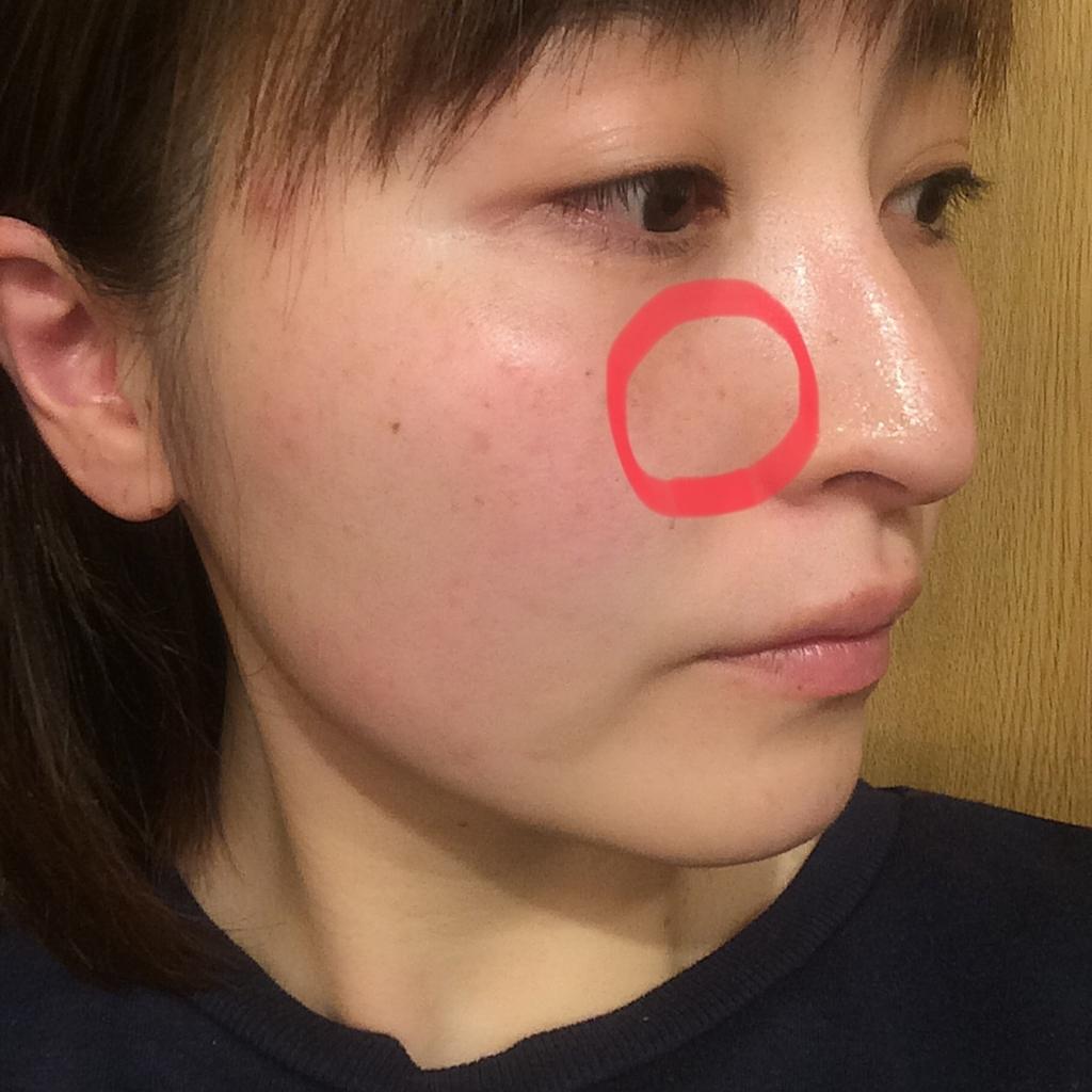 f:id:yuki_kuroha:20190131091058j:plain