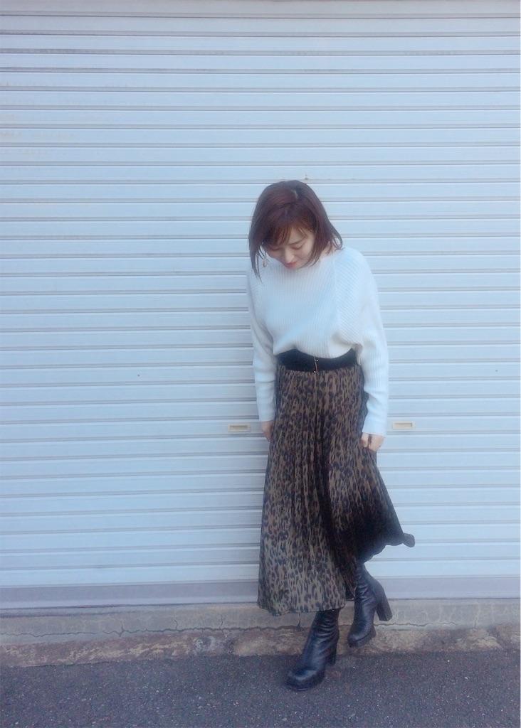 f:id:yuki_kuroha:20190202151622j:image