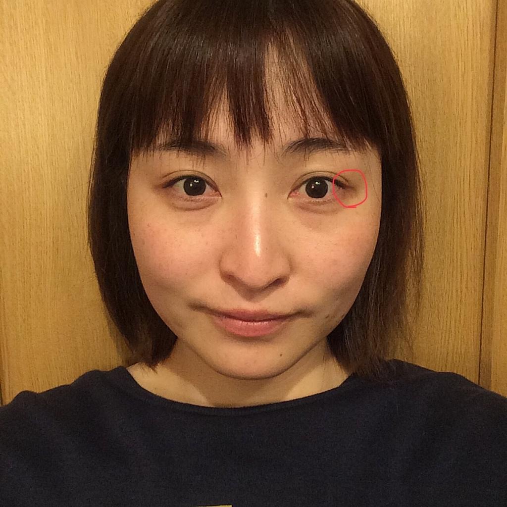 f:id:yuki_kuroha:20190220222619j:plain