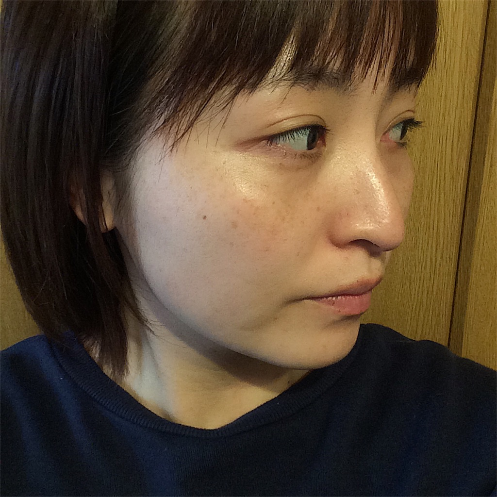 f:id:yuki_kuroha:20190305164047j:image
