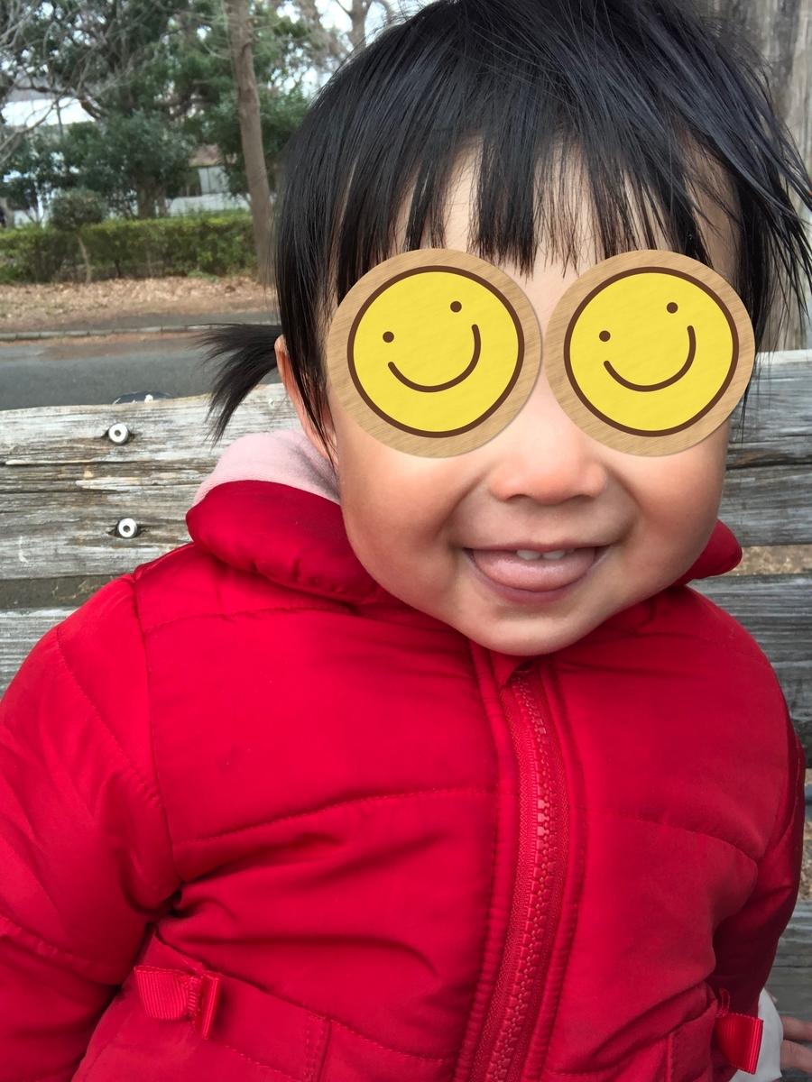 f:id:yuki_no_hana:20210128133044j:plain
